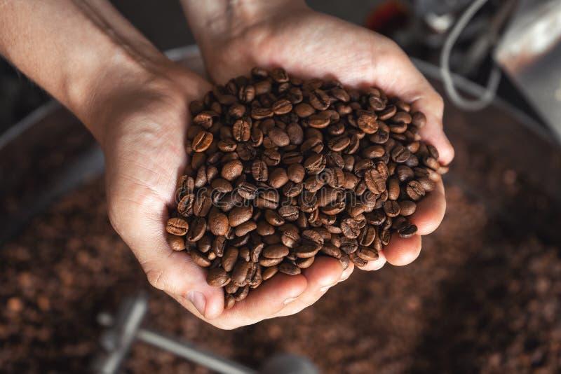 Granos del caf? fresco que asan en manos en el fondo del asador imagen de archivo libre de regalías