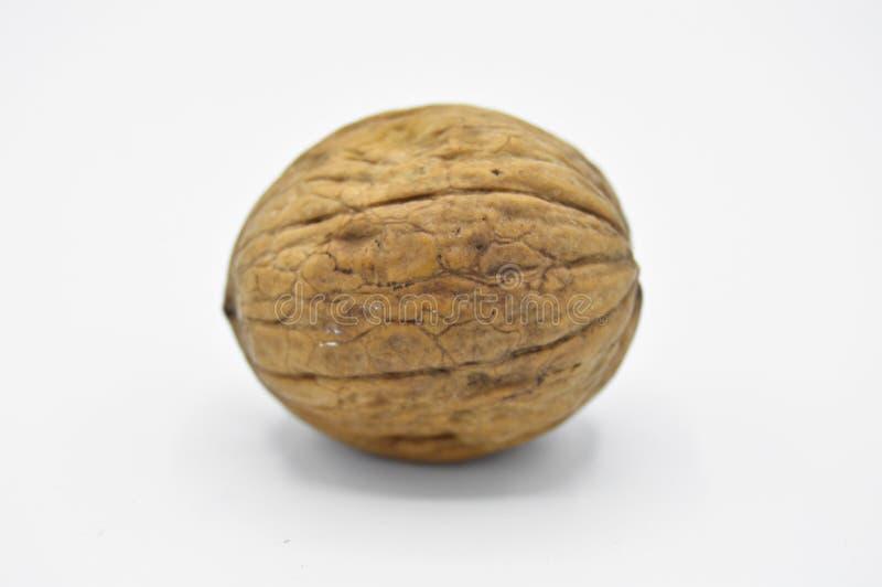 Granos marrones beige sanos y nutritivos de la nuez imagen de archivo