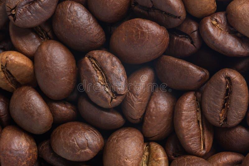 Granos robusta y del arabica asados de café fotografía de archivo libre de regalías