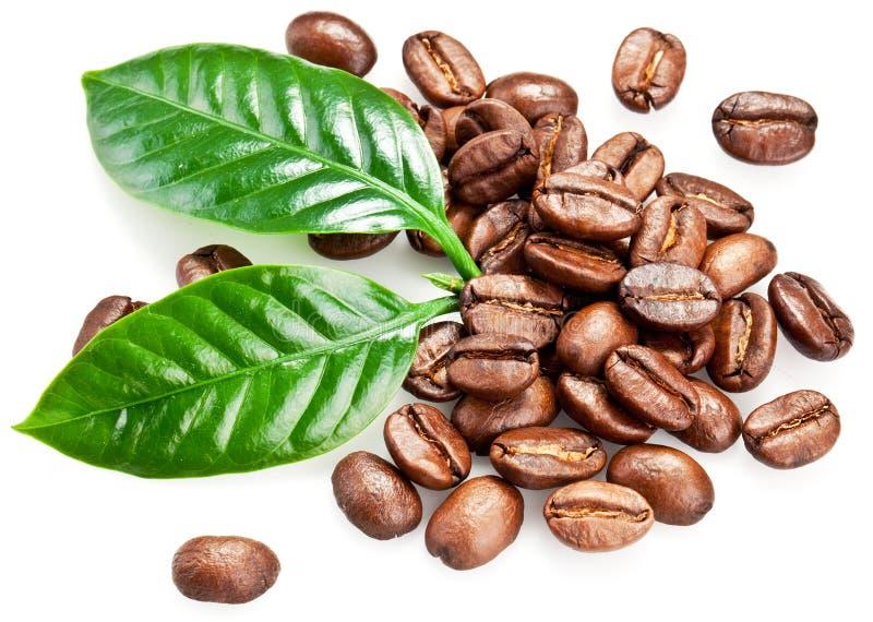 Granos y hojas asados de café. imagen de archivo