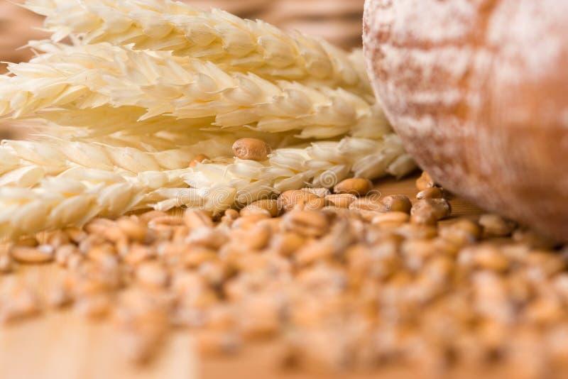 Granos y pan del trigo foto de archivo