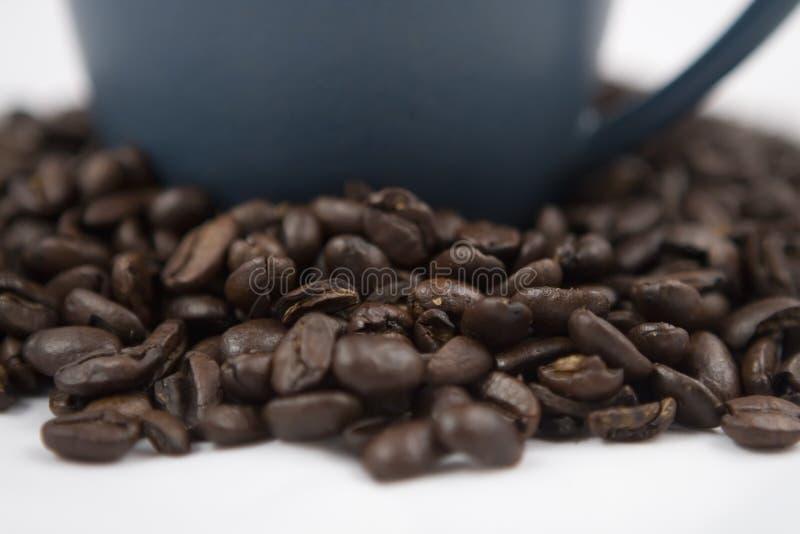 Granos y taza de café imágenes de archivo libres de regalías