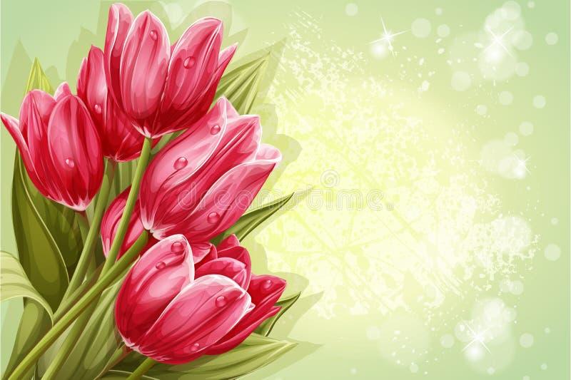 Granska bakgrundsbuketten av rosa tulpan för din text stock illustrationer