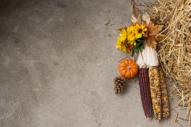 Granturco Autumn Background immagine stock