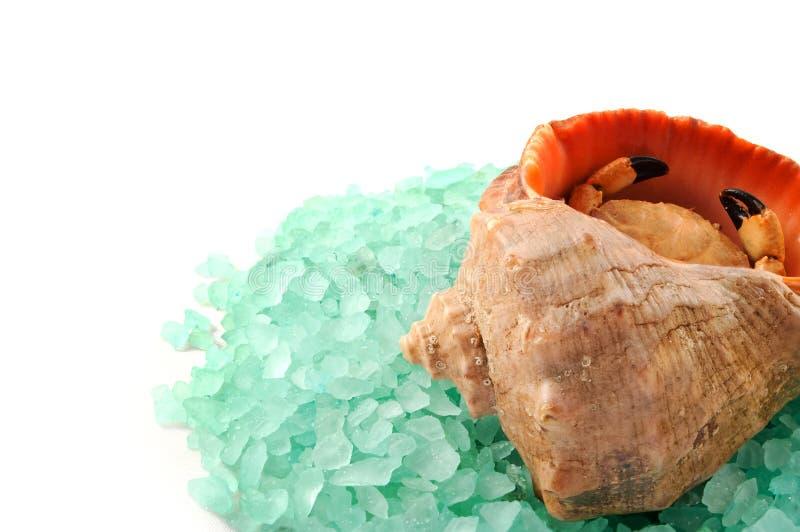 Granules de sel de mer. photos libres de droits