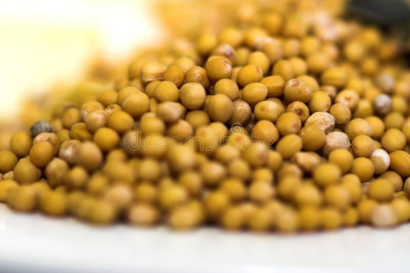 Granuli di seme della senape immagine stock libera da diritti