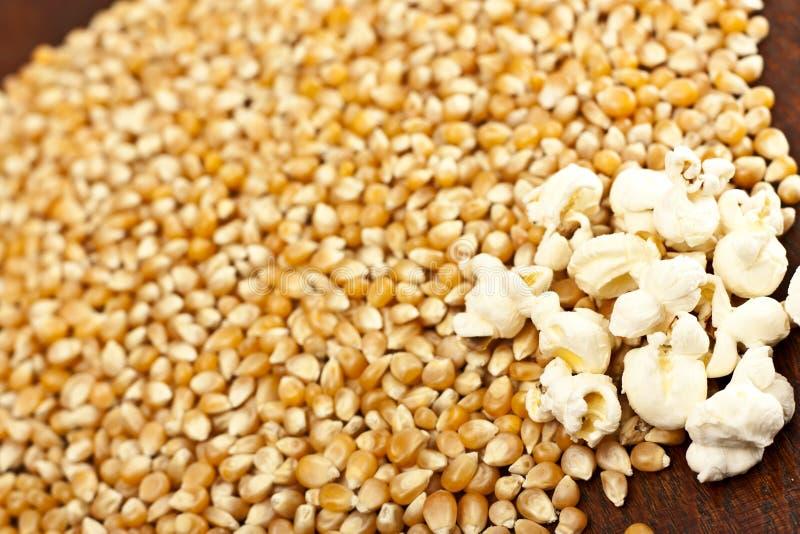 Download Granulo Del Cereale E Del Popcorn Immagine Stock - Immagine di latta, verdura: 24355307