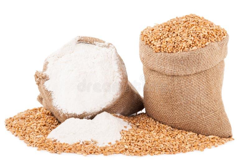 Granulo del frumento e della farina fotografie stock