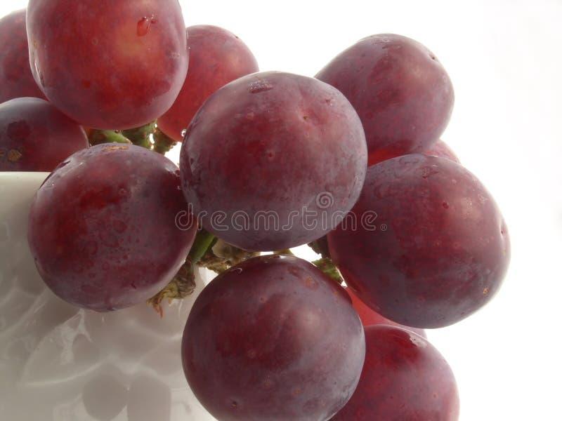 Download Grape stock image. Image of kitchen, health, juice, delicacies - 115091