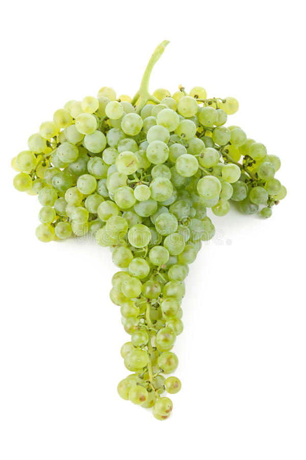 Download Grape stock photo. Image of isolated, juice, food, fruit - 15956386
