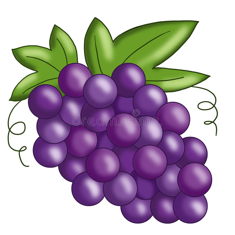 Grape Stock Photo