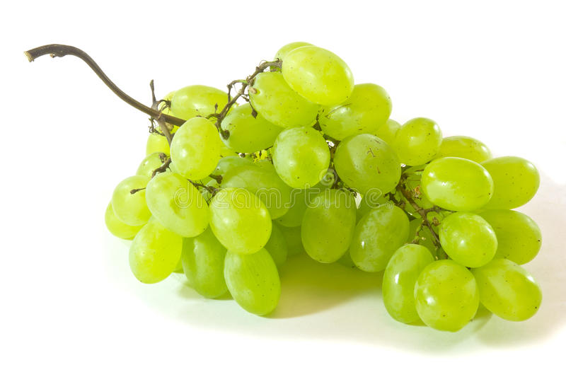 Grape. White bunch of grape on white background