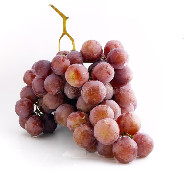 Free Stock Photography  Grape Bunch Picture. Image  3027507 f20ce232d9e