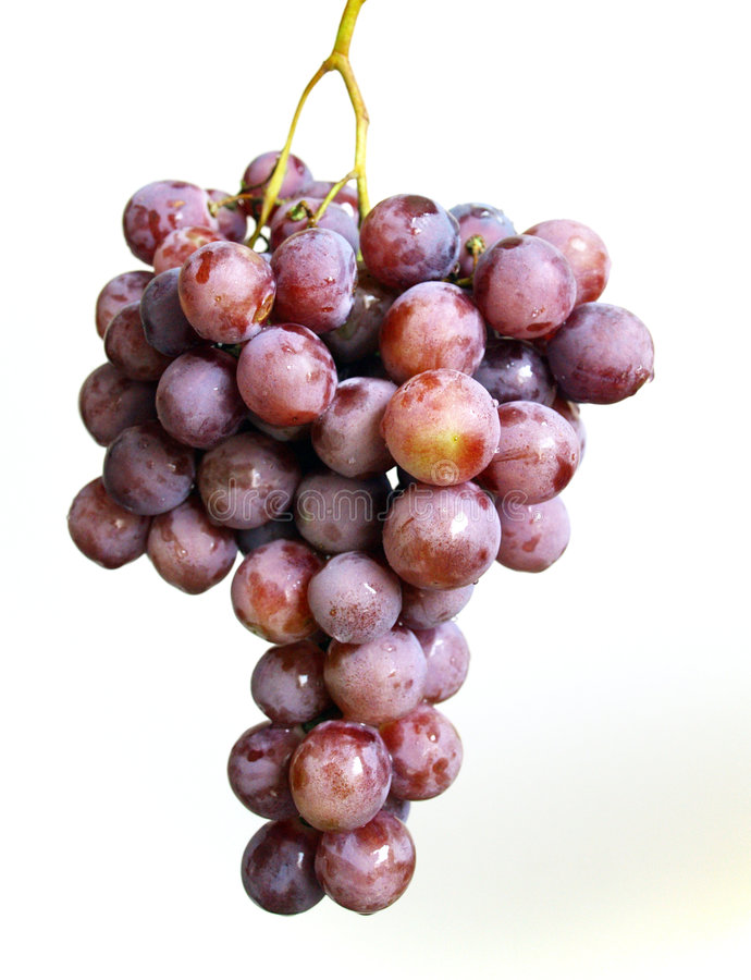 Grape bunch royalty free stock images
