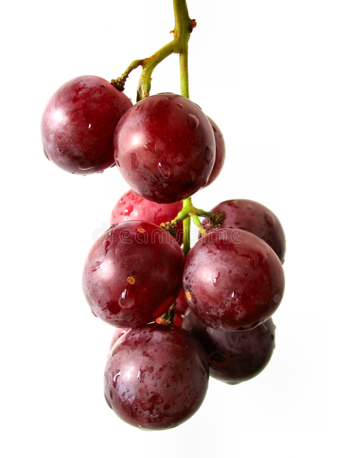 Grape bunch isolated royalty free stock image