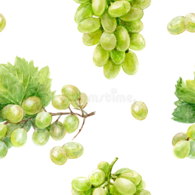 Grape hand draw seamless watercolor fabric pattern. royalty free stock photos