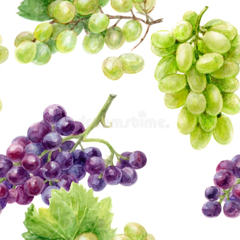Grape hand draw seamless watercolor fabric pattern. stock illustration