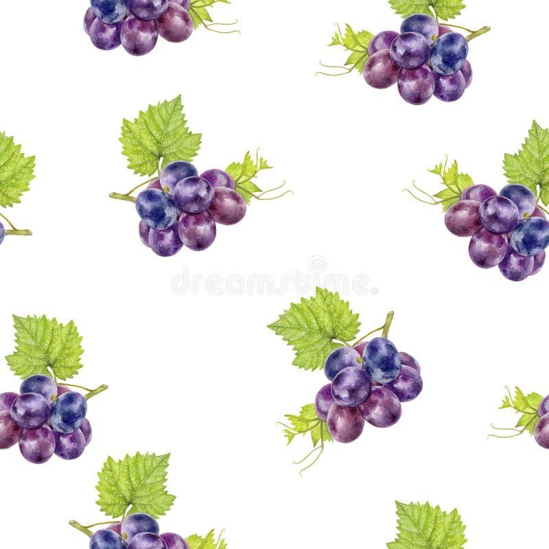 Grape hand drawn watercolor illustration. Seamless pattern. Grape watercolor pattern. Hand drawn watercolor illustration stock illustration