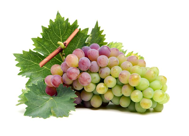 Grape. Image series of fresh vegetables and fruits on white background - grape stock images