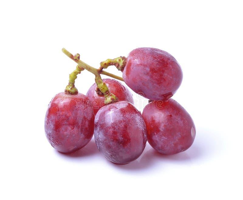 Grape Isolated On White Background royalty free stock image