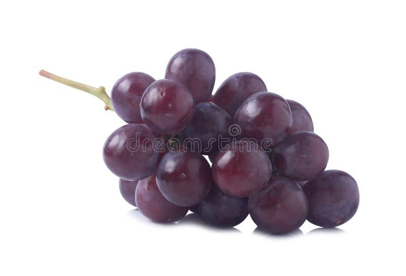 Grape royalty free stock photos