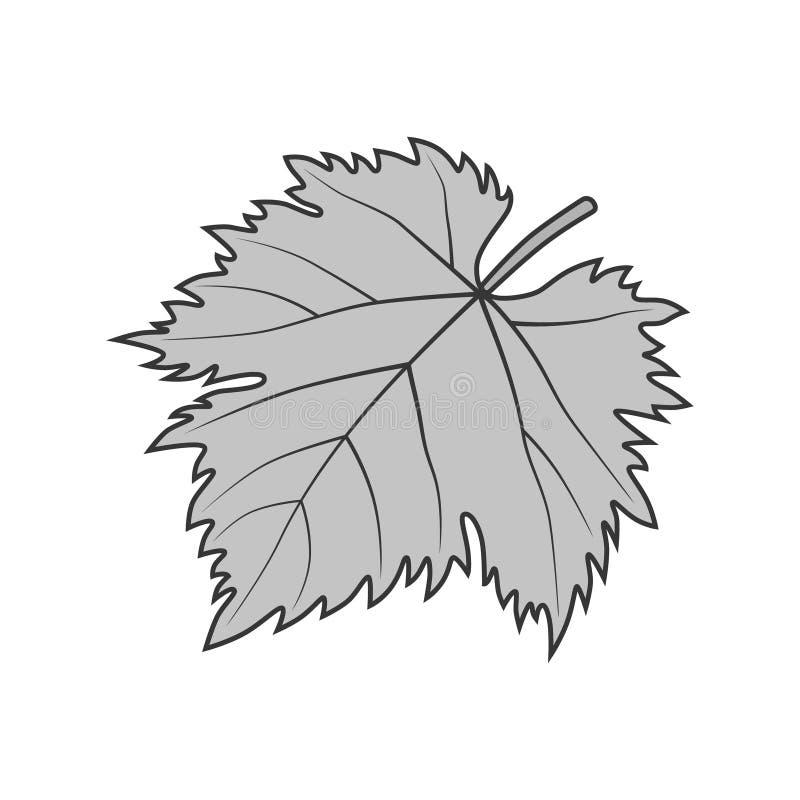Grape leaf vector gray symbol or illustration stock illustration