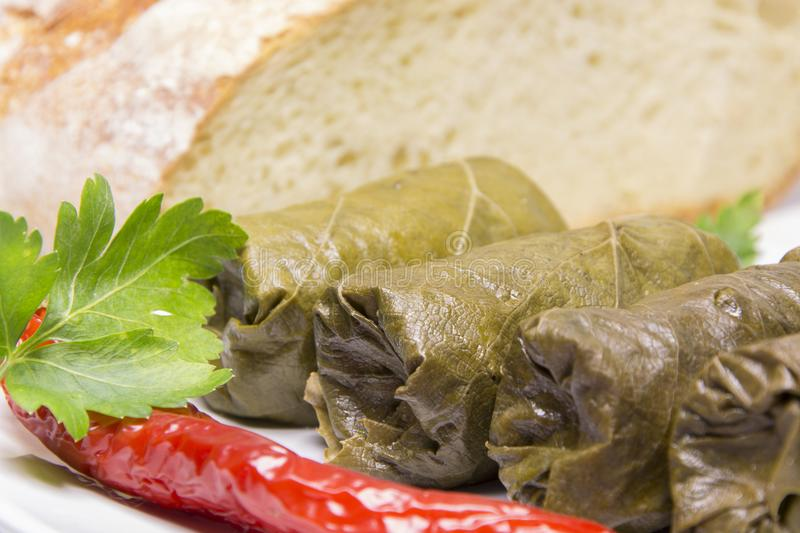 Grape leaves rolls. Sarmale, dolma, dolmades, sarma, golubtsy or royalty free stock photography
