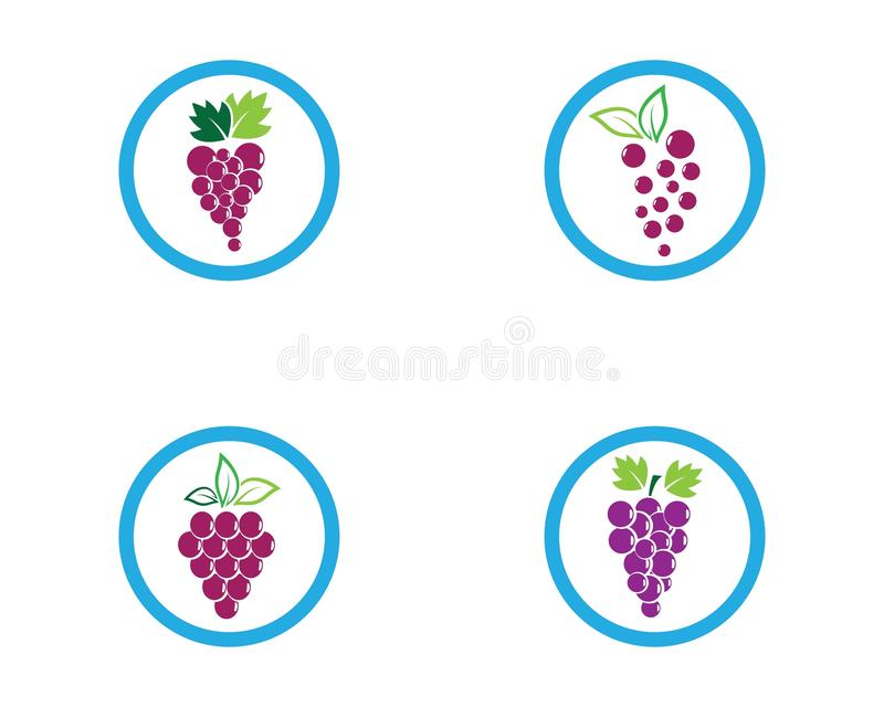 Grape logo template vector illustration