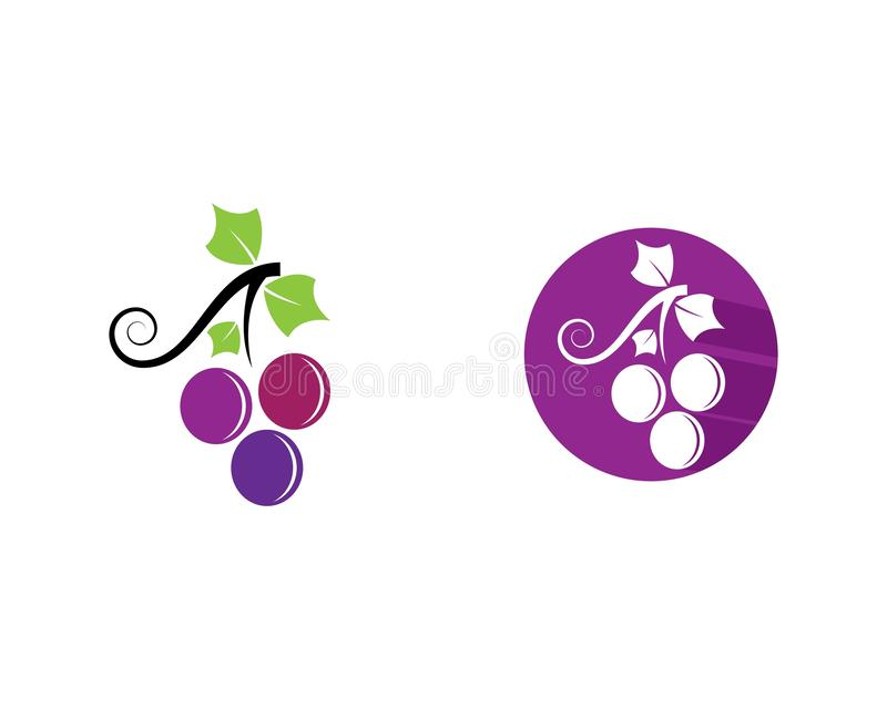 Grape logo template vector icon stock illustration