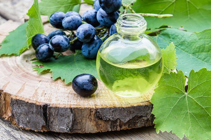 Grape seed oil in a glass bottle near blue grapes and green leaves on old wooden boards. Spa, eco products concept stock photo