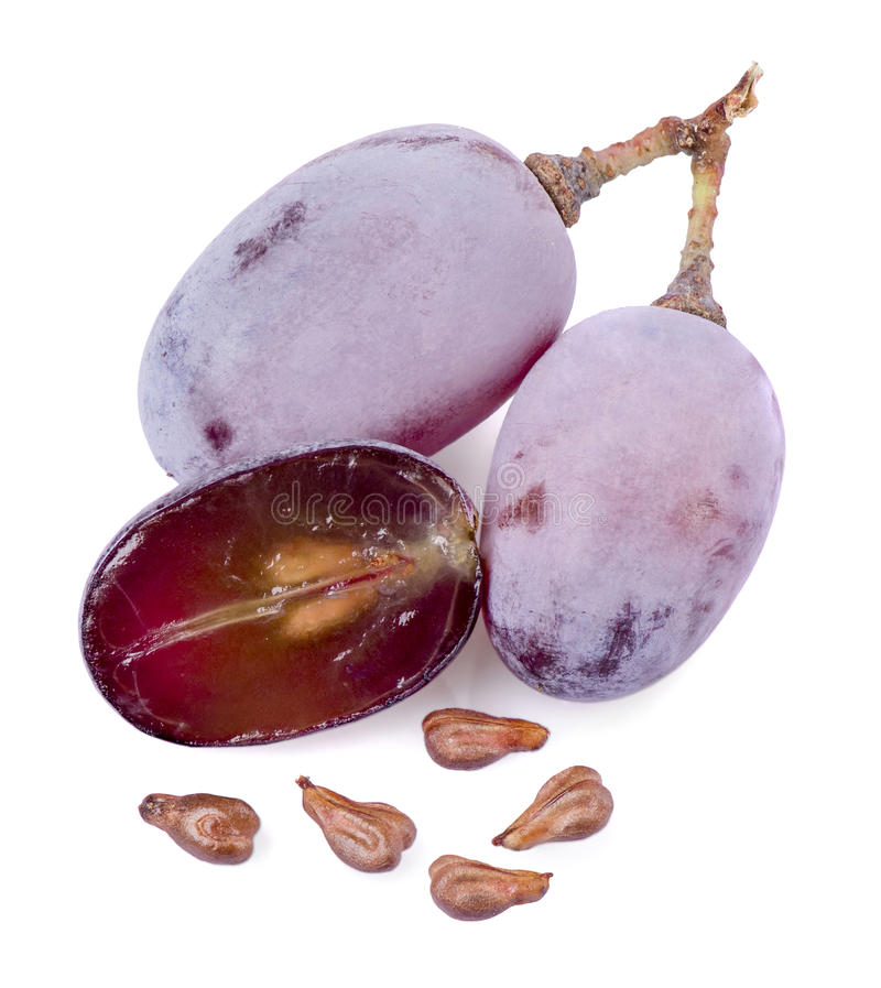 Grape seeds. And berries on a white background royalty free stock photo
