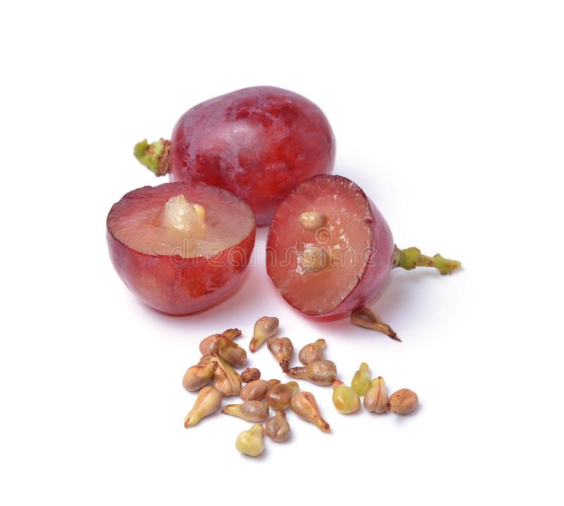 Grape seeds on white background macro closeup stock images