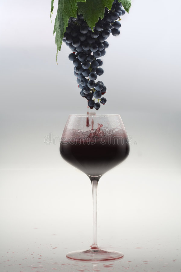 From the grape to the glass royalty free stock photo