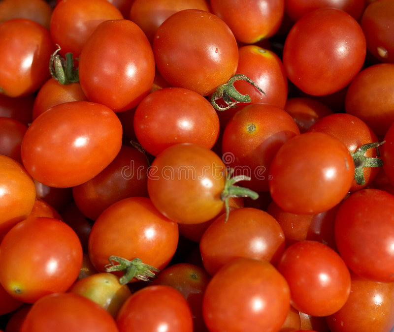 Grape tomatoes stock photography