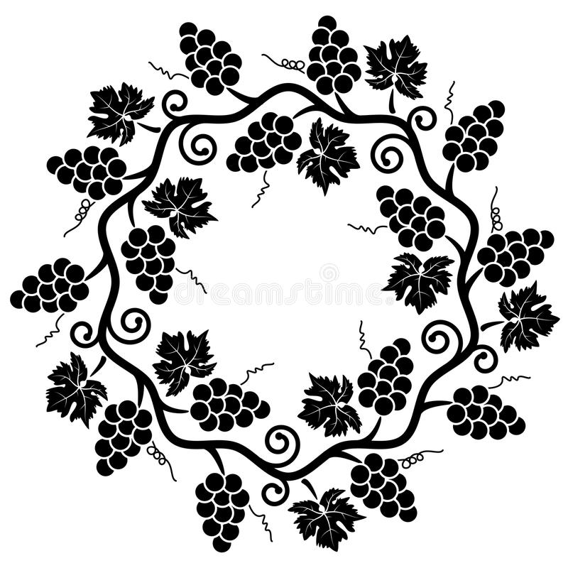 grape vine vector stock vector illustration of design 55256242 rh dreamstime com Leaf Vine Vector Black Line Vector