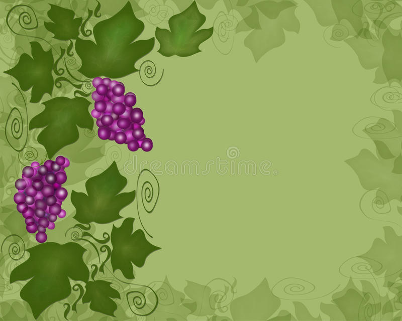 Grape vine. Floral element green background stock illustration