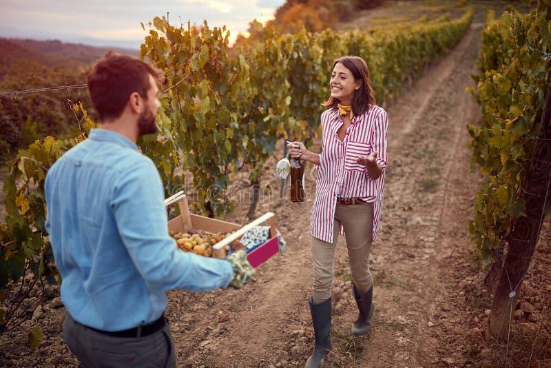 Grape Vineyard fields. Man and woman on autumn vineyard tasting wine stock photography
