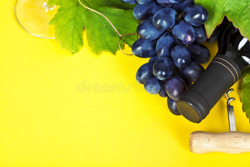 Grape and wine royalty free stock images