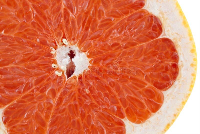 Download Grapefruit stock photo. Image of juicy, nature, organic - 14857438