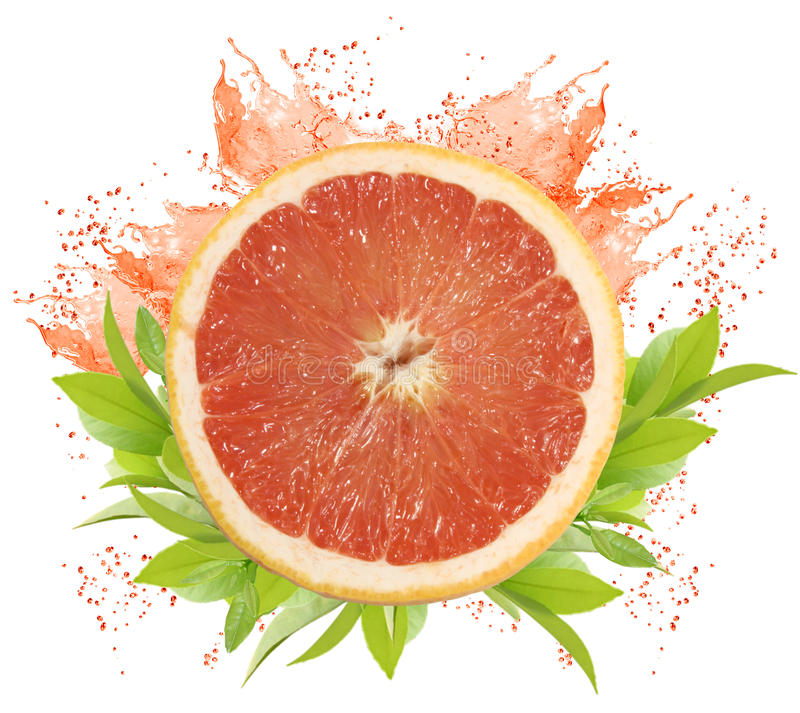 Download Grapefruit stock image. Image of half, fresh, grapefruit - 15088665