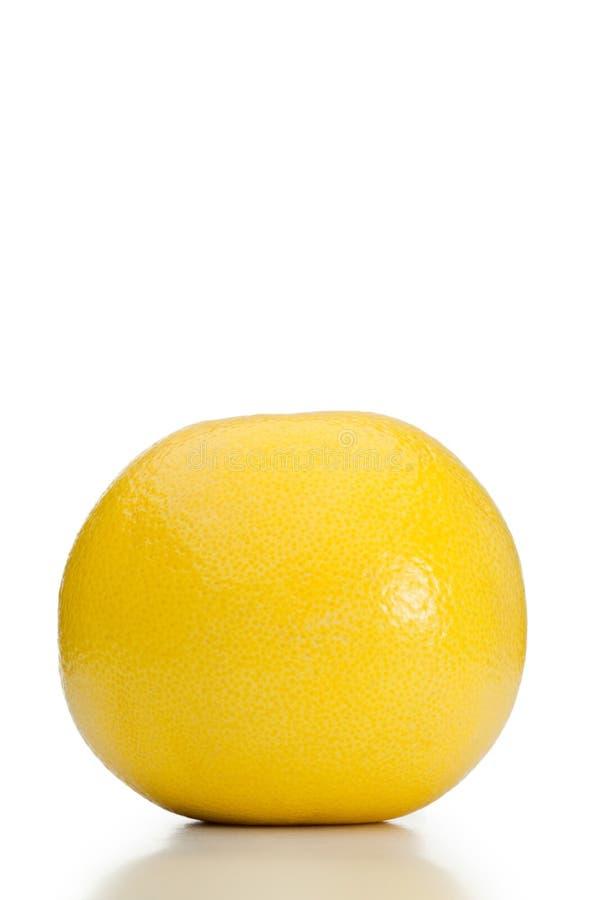 grapefruit fotografia stock