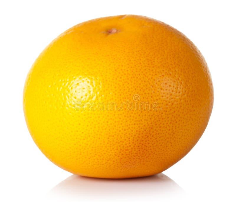 Grapefruit. On white background. Fresh and juicy royalty free stock photo