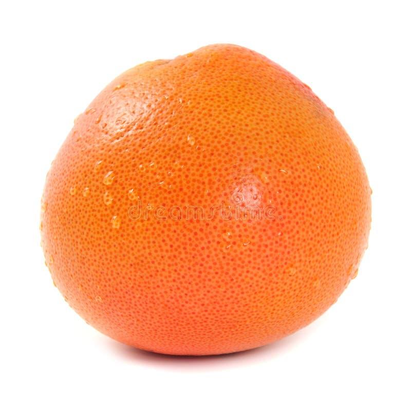 Grapefruit royalty-vrije stock afbeelding