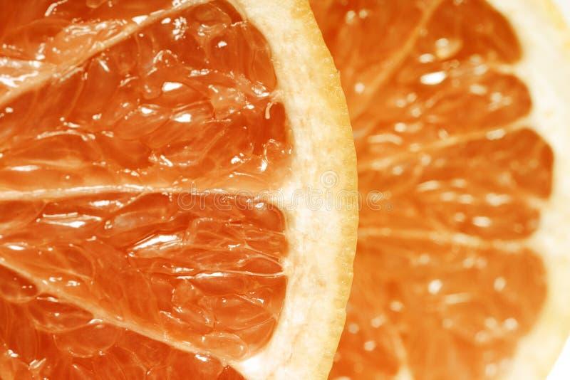 Download Grapefruit stock photo. Image of fruit, slices, close - 7929908