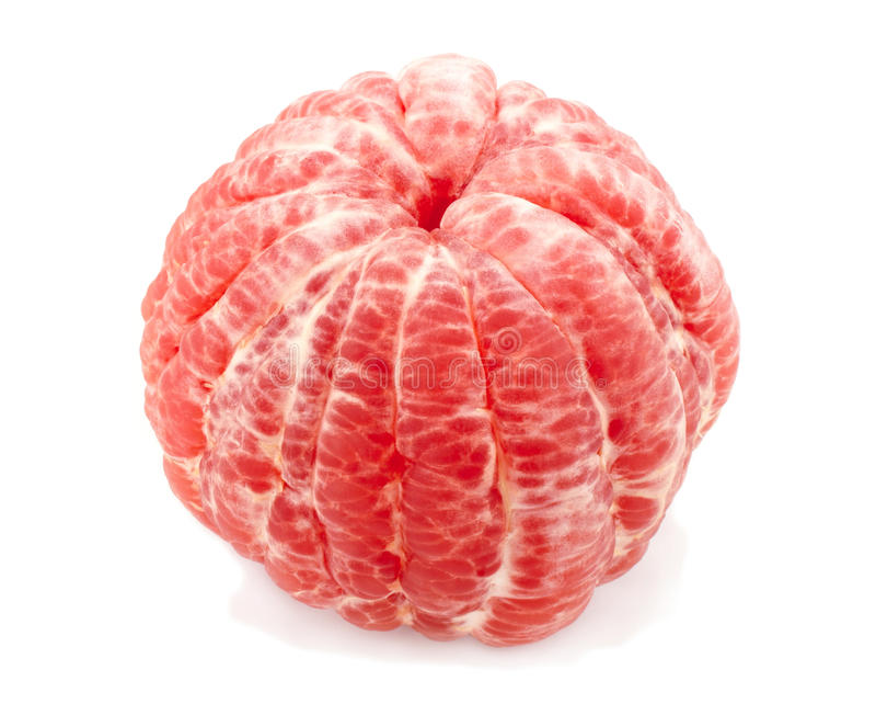 grapefruit obraz royalty free