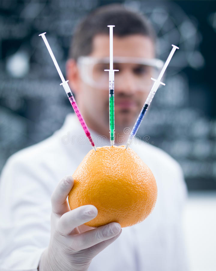 Grapefruit Chemical Reseach Royalty Free Stock Images