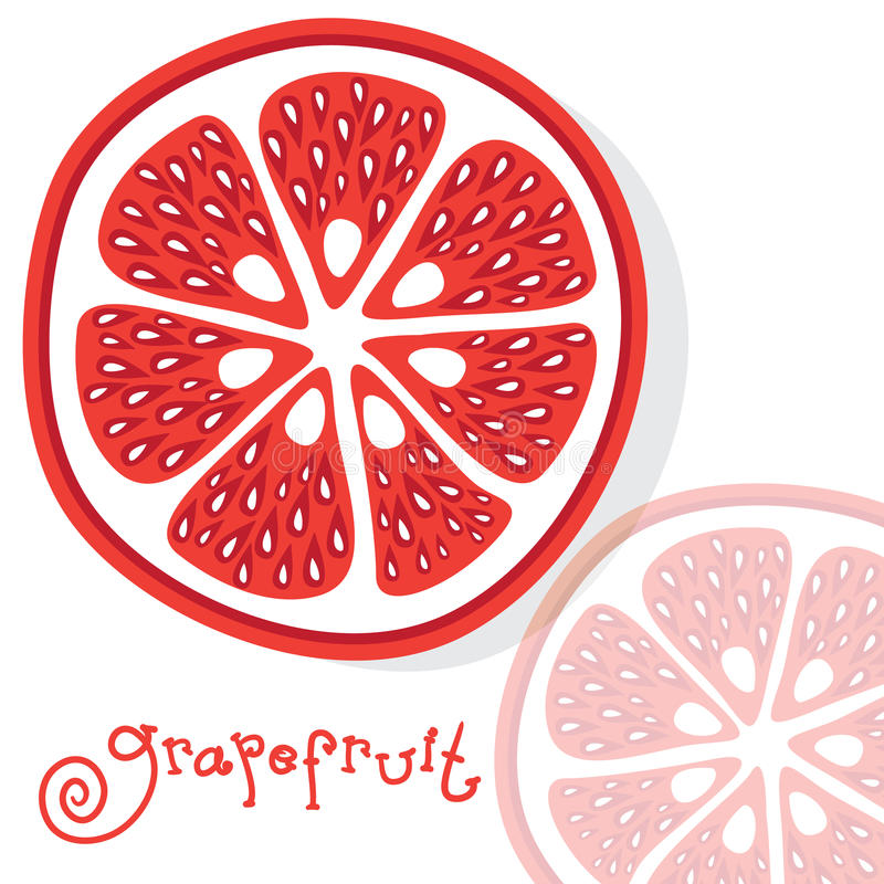 Grapefruit citrus fruits vector. Drawing vitamins royalty free illustration