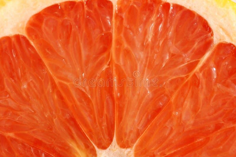 Grapefruit close up royalty free stock photos