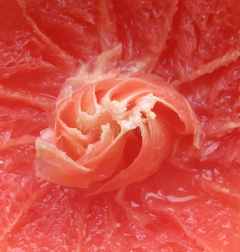 Grapefruit Closeup Stock Image