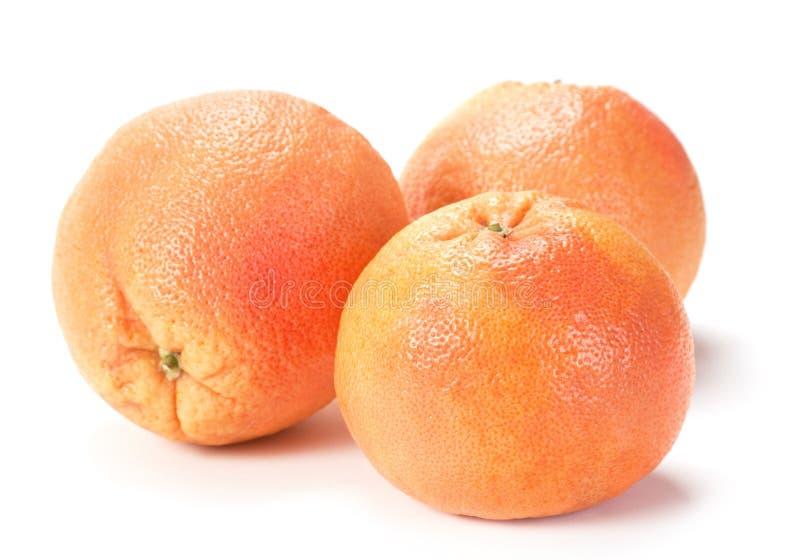 Grapefruit detail stock photography